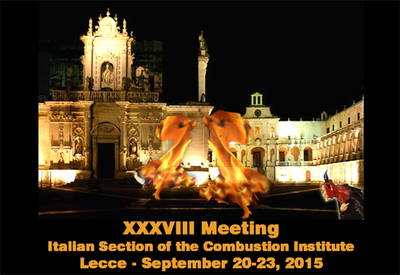 xxxviii combustion meeting