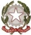 LogoMIUR copia