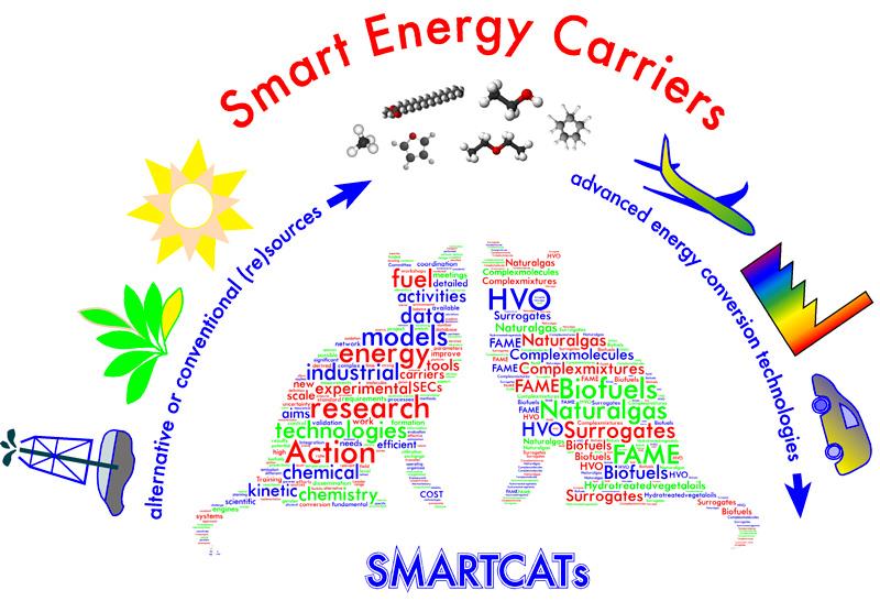 smartcats picture