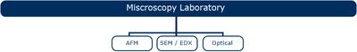 lab microscopiaEN
